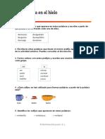 VOCABULARIO PREFIJOS Y SUFIJOS.doc