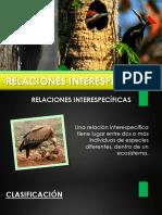 Relaciones Interespecificas Powerpoint