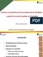 Biodiesel Palm A