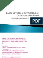 Basal Metabolik Rate (Bmr) Dan