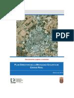 Borrador Plan Director de La Movilidad Ciclista en Ciudad Real