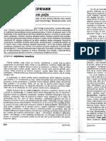 brzina datiranje bistrovodnoj floridi savjet o korištenju web stranica za upoznavanje