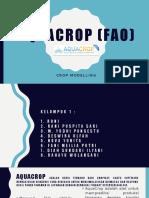 Aquacrop (Fao)