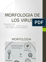 Morfologia de Los Virus