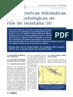 Caracteristicas Hidraulicas y Geomorfologicas de Rios de Montaña