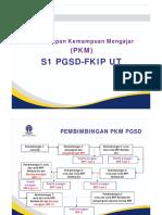 File 2 PP Pelaksanaan PKM PGSD 1 juli 2013.pdf