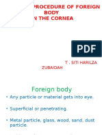 Foreign Body in Eye (Pp)