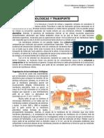 9 Membranas Biológicas y Transporte