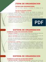 Sistema de Organizacion