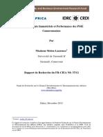 Investissements Immateriels Et Performance Des PME Camerounaises (1)