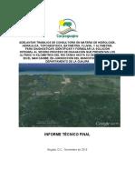 Informe Final Río Cañas V1