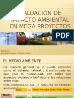 PPT EIA de Megaproyectos 19-10-09[1]