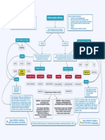 Psicologia Social - Mapa Conceitual