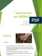 Generación Biomasa