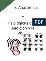 Audicion y Vision