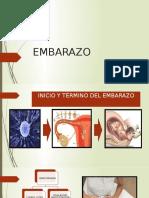 Sistema Cardiovascular en El Embarazo