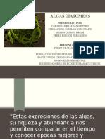 Exposicion Diatomeas