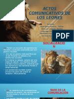 Actos Comunicativos de Los Leones