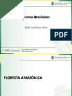 00 Biomasbrasileiros 120115171421 Phpapp02