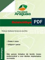 06-ostei-sarco (1)