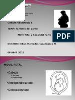 04 f.p.movil Fetal -Canal Parto-3-2015