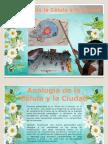 analogadelaclulaylaciudad-131124183254-phpapp01