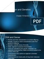 16-4 Reproduction and Genetics Web