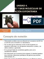 CLASE 13- Mutaciones Genéticas_Genes Mutadores y Antimutadores, Etc...