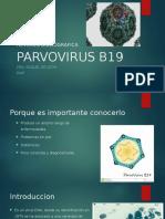 REVISION BIBLIOGRAFICA PARVOVIRUS B19.pptx