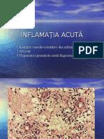 INFLAMATIA-2013