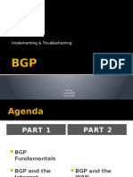 BGPPub-122924954717-phpapp03 (1)