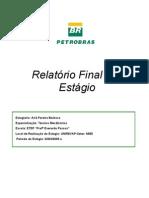 Relatório Final de Estágio AIRÃ