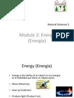 Unit 4 5º Energy Printable (1)