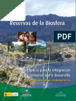 Pezzati 2007 Palmares de Rocha