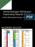 Makropal - 6