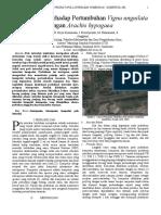 Pola Interaksi Terhadap Pertumbuhan Glycine Max Dengan Vigna Unguilata