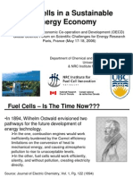 Insight into fuel cell