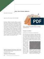 Principios de la adhesión y de la técnica adhesiva