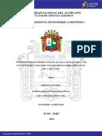 Durand_Aguilar_Marcia_Jakeline.pdf