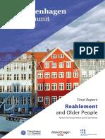 Copenhagen Summit Final Report