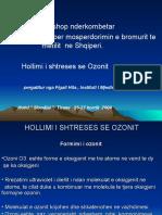 National Workshop Hollimi i Shtreses Se Ozonit