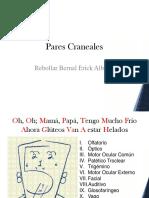 Presentación Ilustrada de Pares Craneales