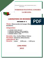 Microbio Lab