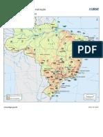 brasil_fauna_ameacada_de_extincao_mamiferos.pdf
