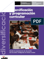 Guía - Diversificación Curricular (Fuente MINEDU)