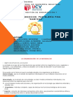 FUNDAMENTO DE GESTION.pptx