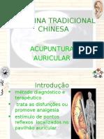 Docslide.com.Br Medicina Tradicional Chinesa Acupuntura Auricular