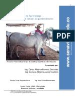 Desposte y corte de canales de ganado bovino.pdf