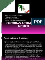 culturas de mexico actuales