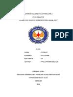 Laporan Praktikum Annorganik i